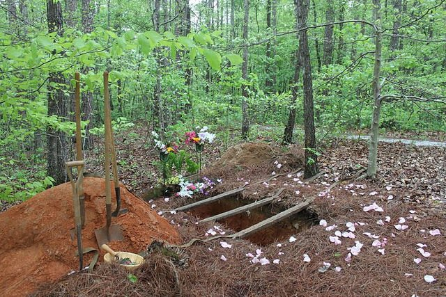image of a green burial site in summer