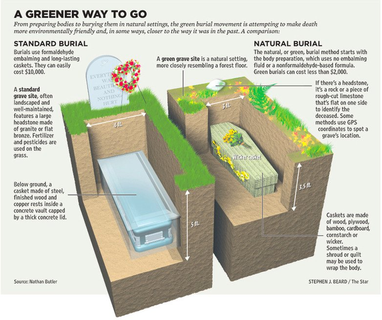 visual graphic showing the impact of green burial vs traditional methods